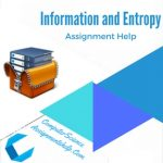 Information and Entropy