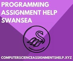 Computer Science Homework Help Swansea
